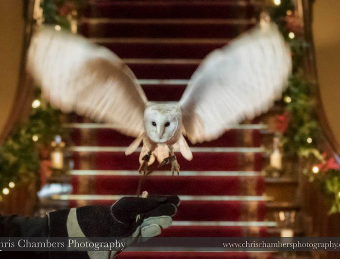 Allerton Castle Wedding Photography | Nicola and Gary's Wedding | North Yorkshire Wedding Photographer